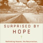 Favourite Quotes from Surprised by Hope by N.T. Wright
