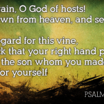 Psalm 80: the Most Neglected Messianic Psalm?